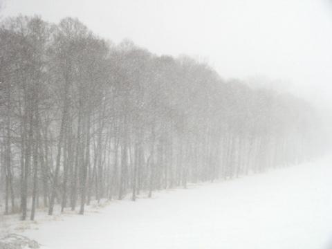 昨日の夜からずっと吹雪